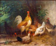 EW 0234 – Hühner