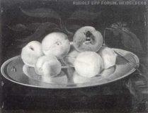 EW 0316 – Stillleben mit Obst und Insekten